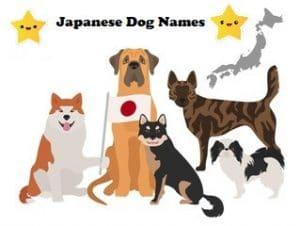 japanese dog names